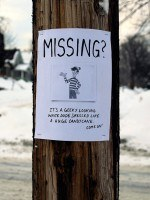 Where's Wally Missing Poster