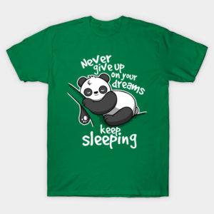 Panda keep sleeping