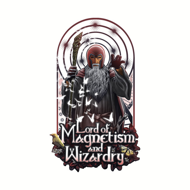 Lord of Magnetisn and Wizardry