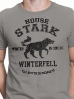 Winter is Coming (Alt) T-Shirt